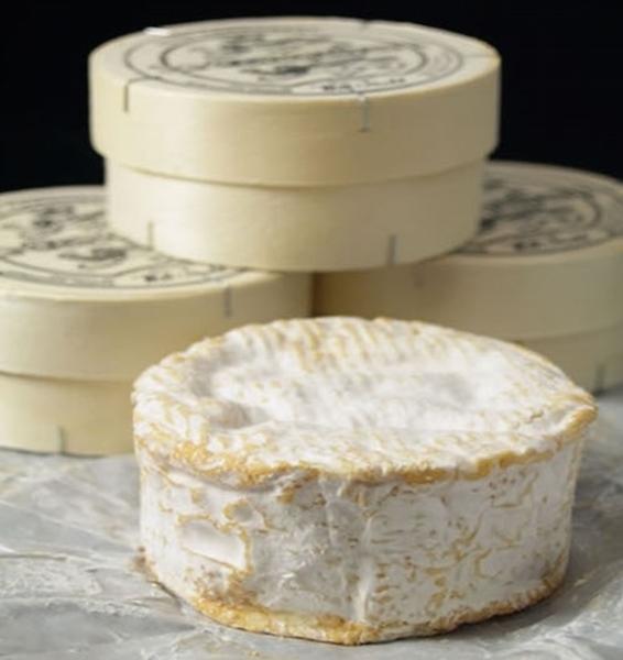 Camembert le Conquerant