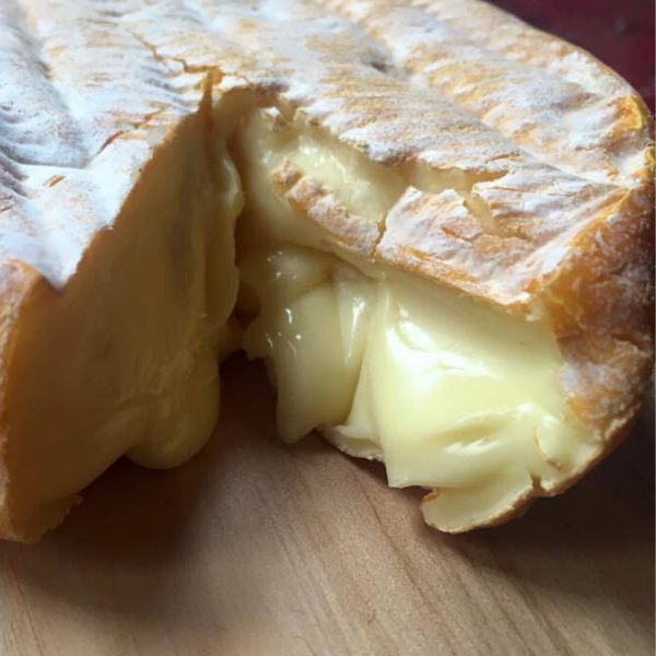Picture of Cheese - Woombye Blackall Gold